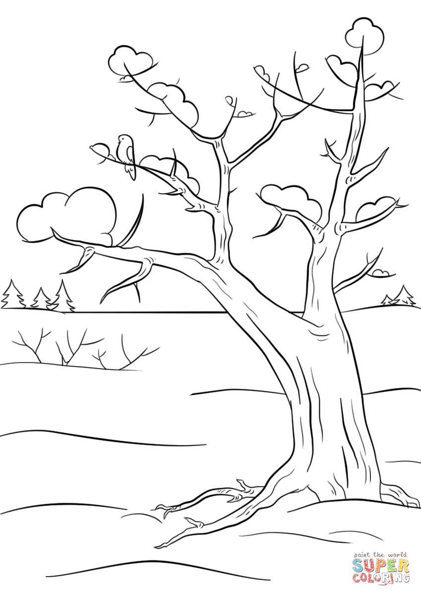 Best ideas about Free Printable Coloring Sheets For Adults Winter Pine Tree . Save or Pin Winter Tree coloring page Now.