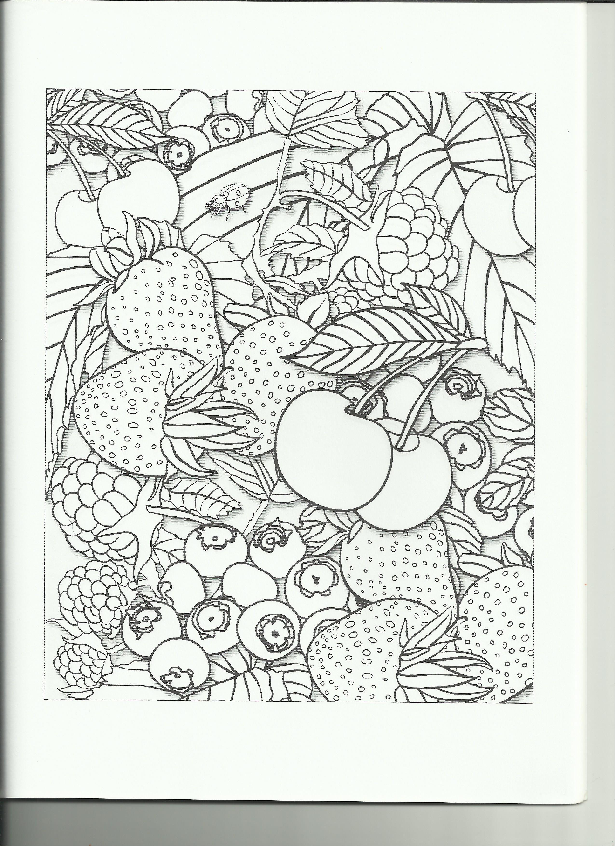 Best ideas about Fruit Coloring Pages For Adults . Save or Pin Coloring Book Review Fruit Garden Coloring Book Now.