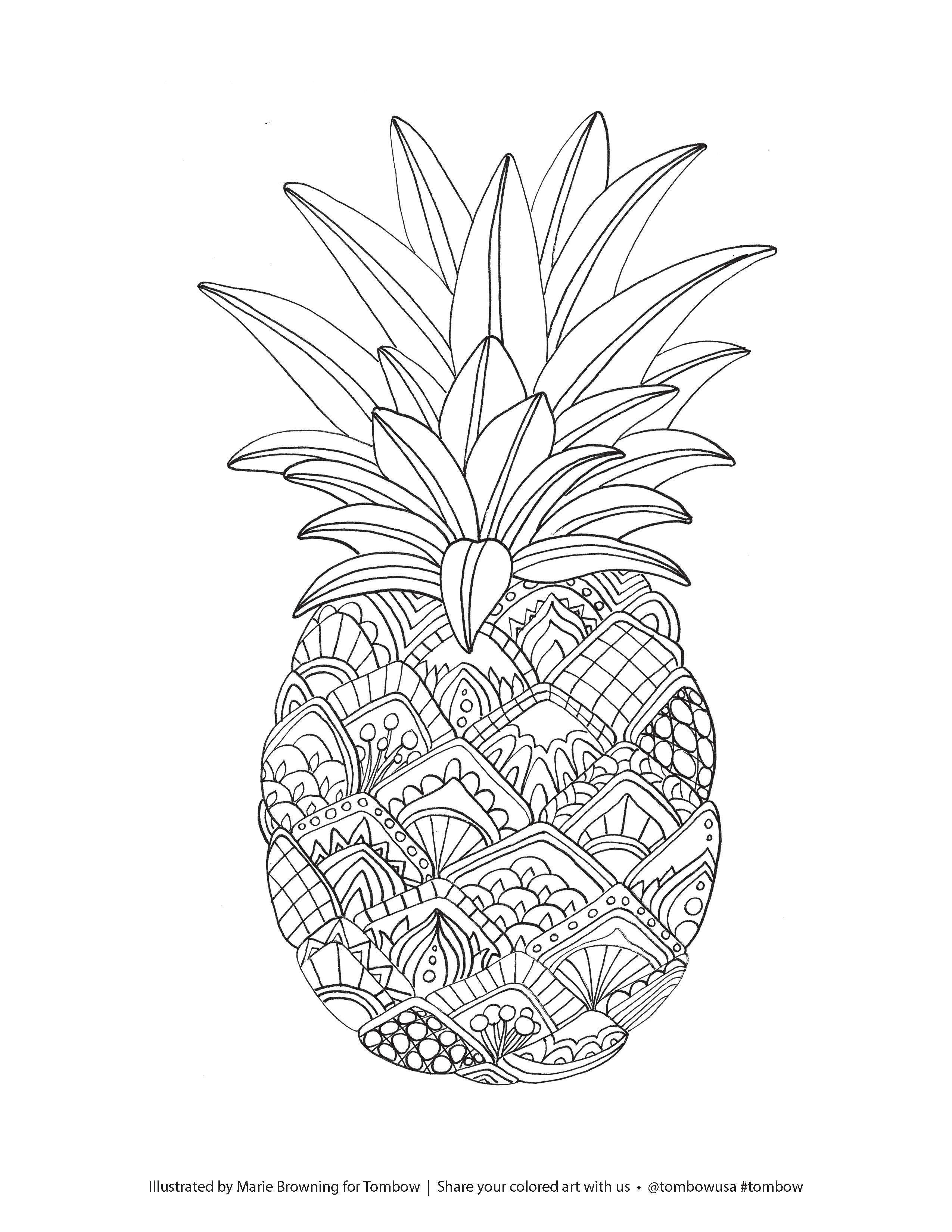 Best ideas about Fruit Coloring Pages For Adults . Save or Pin Zentangle Pineapple Coloring Page illustrated by Marie Now.