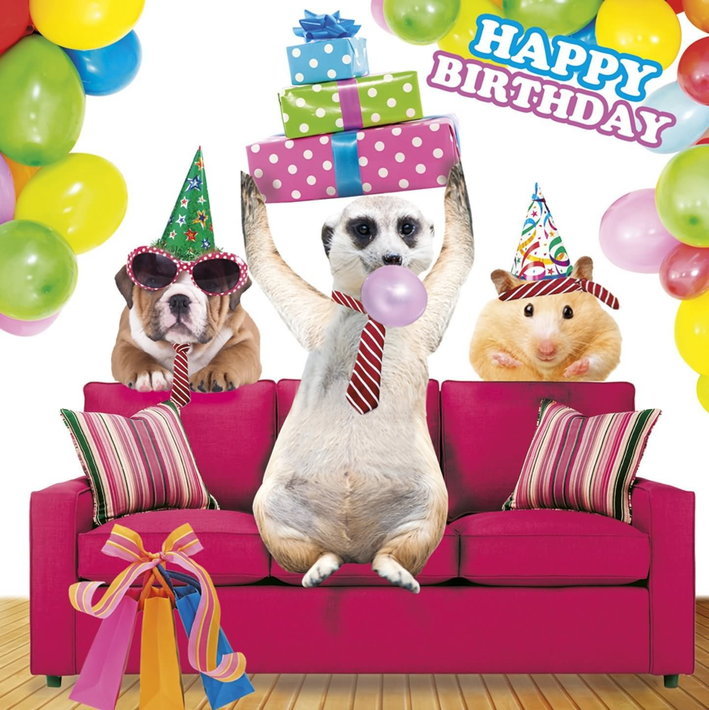 Best ideas about Funny Animal Birthday . Save or Pin 20 Most Funny Birthday Now.