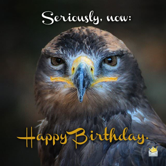 Best ideas about Funny Animal Birthday . Save or Pin Cute Animals and Funny Happy Birthday Wishes Now.