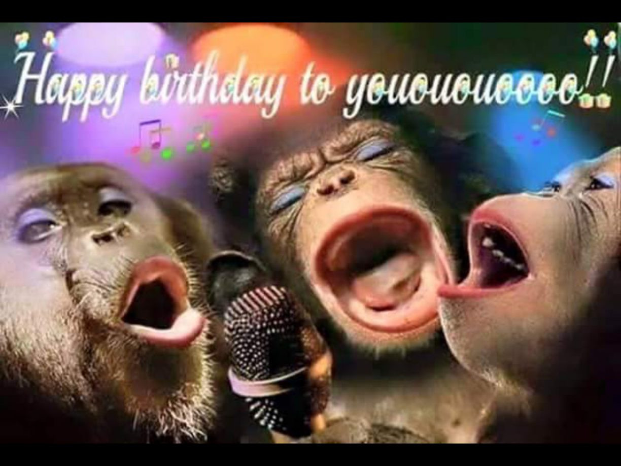 Best ideas about Happy Birthday Girl Funny . Save or Pin Funny Happy Birthday Wishes Now.