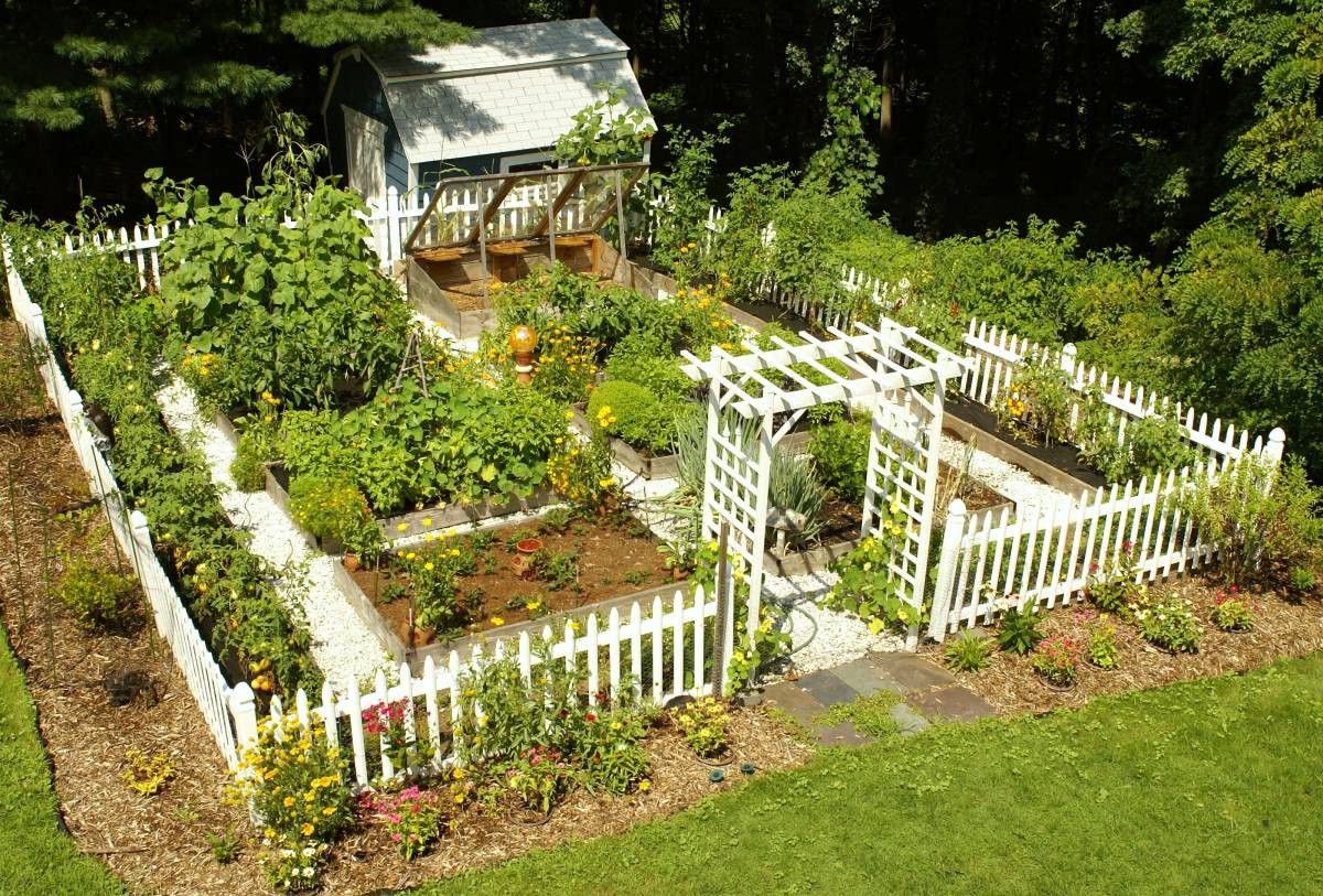 Best ideas about Home Vegetable Garden Ideas . Save or Pin 20 Impressive ve able garden designs and plans Now.