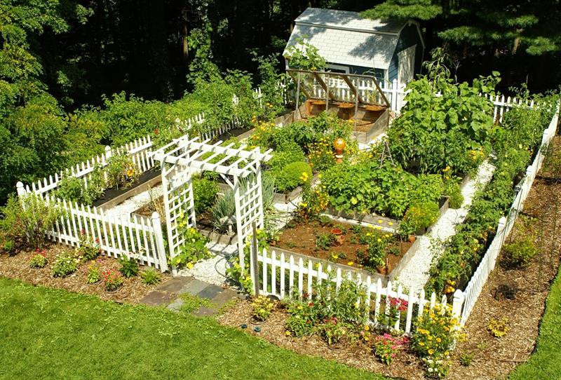 Best ideas about Home Vegetable Garden Ideas . Save or Pin 24 Awesome Ideas for Backyard Ve able Gardens Now.
