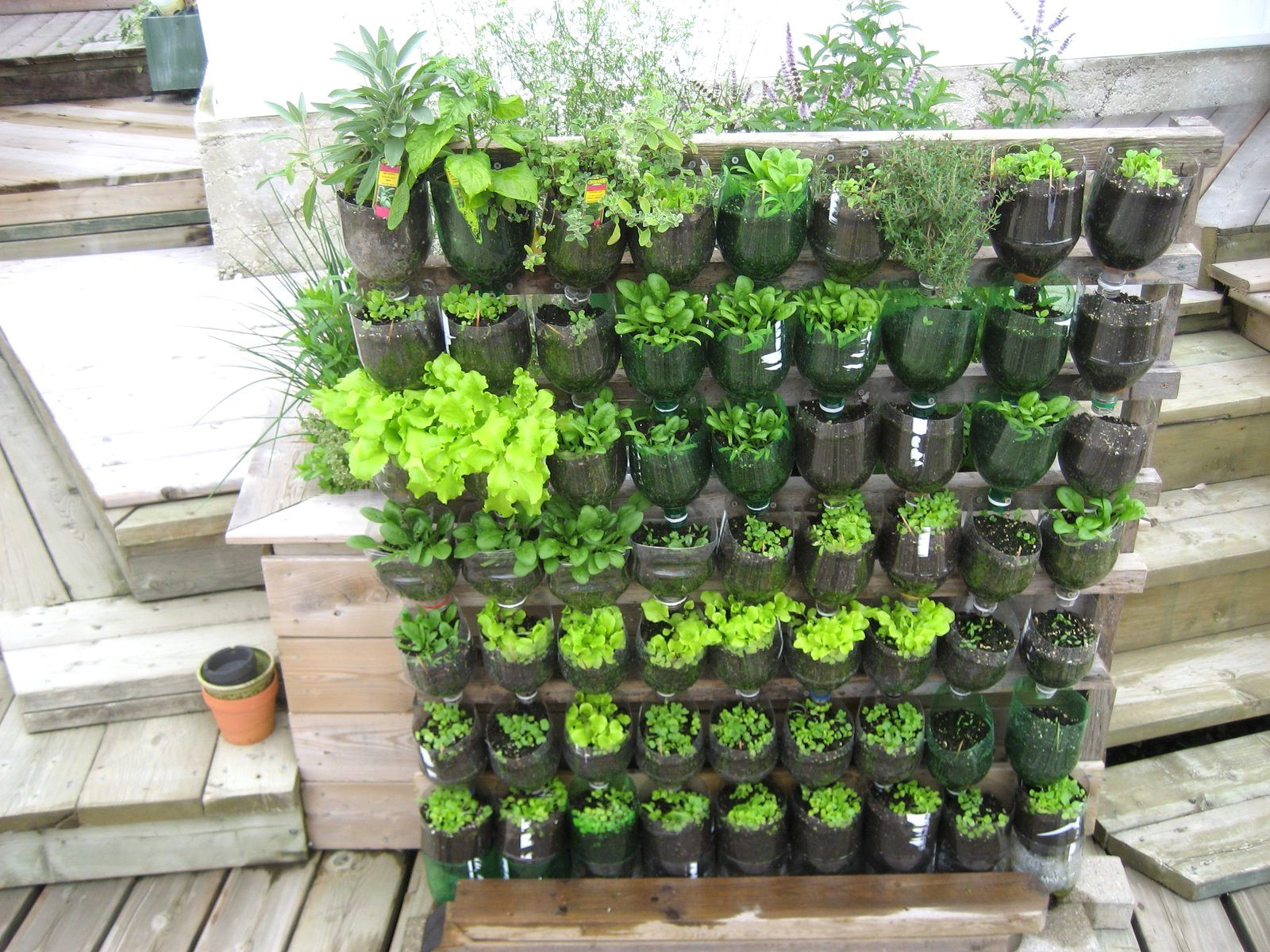 Best ideas about Home Vegetable Garden Ideas . Save or Pin Related Wallpaper For Home Ve able Garden Design Ideas Now.