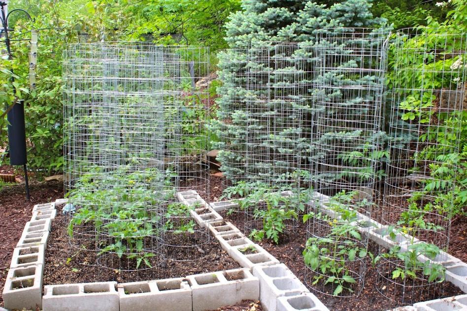 Best ideas about Home Vegetable Garden Ideas . Save or Pin Backyard Ve able Garden House Design With Raised Garden Now.