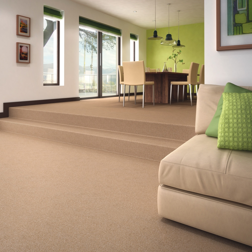 Best ideas about Living Room Carpet . Save or Pin Hawk Haven Bed & Breakfast Now.