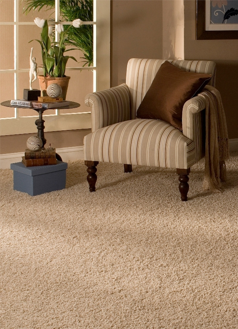 Best ideas about Living Room Carpet . Save or Pin Home Selling Tips Carpet Replacement Gets You More Money Now.
