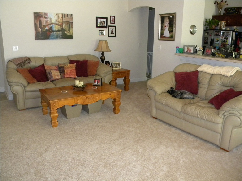 Best ideas about Living Room Carpet . Save or Pin Living Room Carpet Choosing Good Carpet Living Room Idea Now.