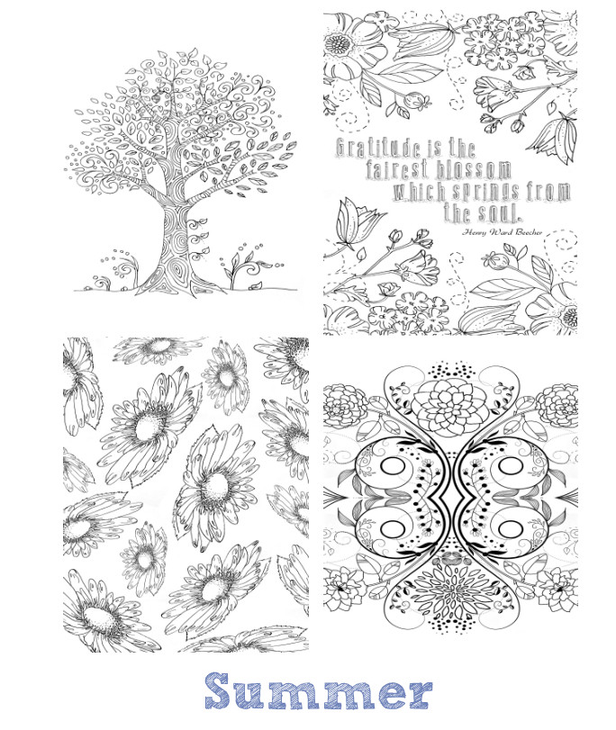 Best ideas about Mini Adult Coloring Books . Save or Pin The Seasons Mini Coloring Book Now.
