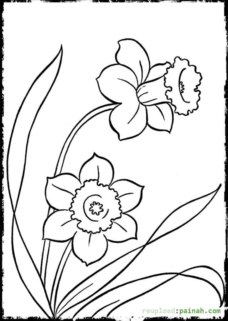Best ideas about New Coloring Pages For Girls . Save or Pin Coloring Pages For Girls Easy Coloring Home Now.