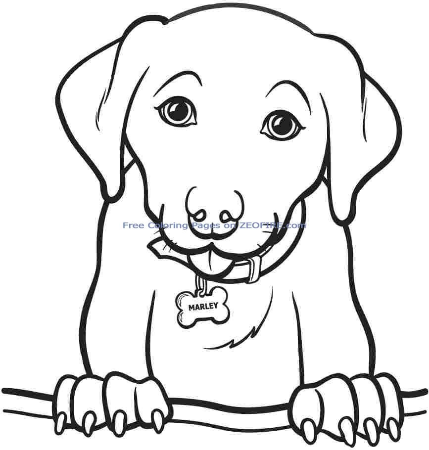Best ideas about Puppy Coloring Sheets For Girls . Save or Pin Coloring Pages For Girls To Print Out Dog Pitchers Dogs Now.