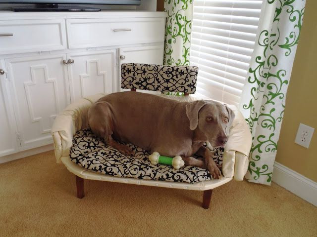 Best ideas about Raised Dog Beds DIY . Save or Pin Diy Elevated Dog Bed Dog Pet s Gallery zp3eXvp2Wm Now.