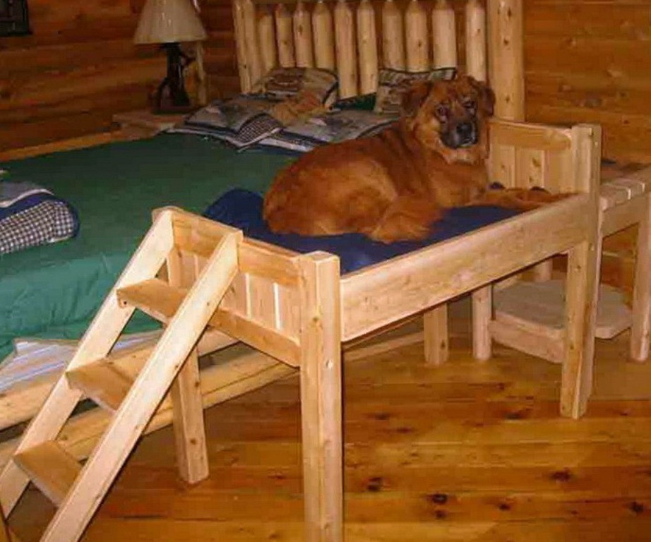 Best ideas about Raised Dog Beds DIY . Save or Pin Raised Dog Bed With Stairs DIY Raised Dog Bed With Stairs Now.