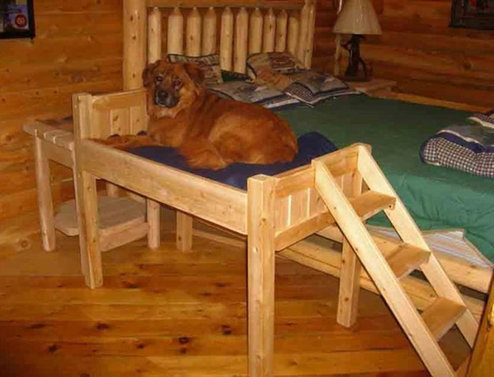 Best ideas about Raised Dog Beds DIY . Save or Pin Raised Dog Bed With Stairs Diy Raised Dog Bed With Now.