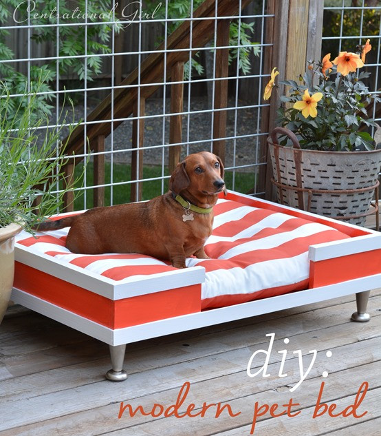 Best ideas about Raised Dog Beds DIY . Save or Pin DIY Modern Pet Bed Now.