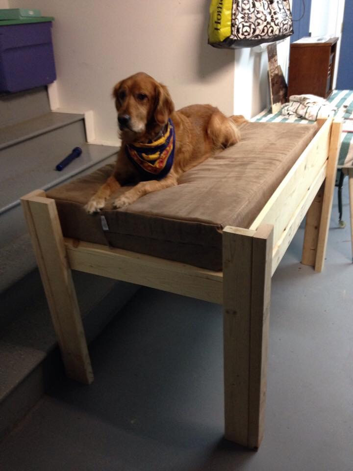 Best ideas about Raised Dog Beds DIY . Save or Pin Elevated Dog Bed Plans Wood korrectkritters Now.