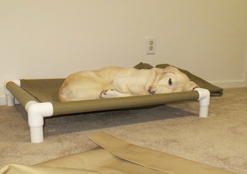 Best ideas about Raised Dog Beds DIY . Save or Pin DIY Elevated Dog Bed PVC Style DIY Elevated Dog Bed PVC Now.