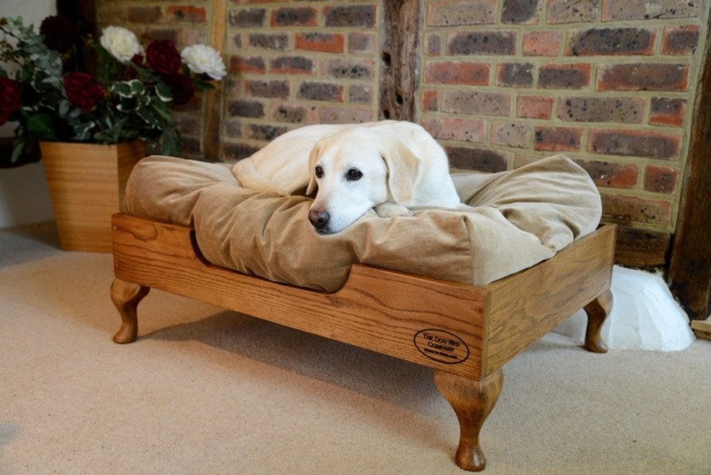 Best ideas about Raised Dog Beds DIY . Save or Pin Raised Dog Bed With Steps Raised Dog Bed Replacement Cover Now.