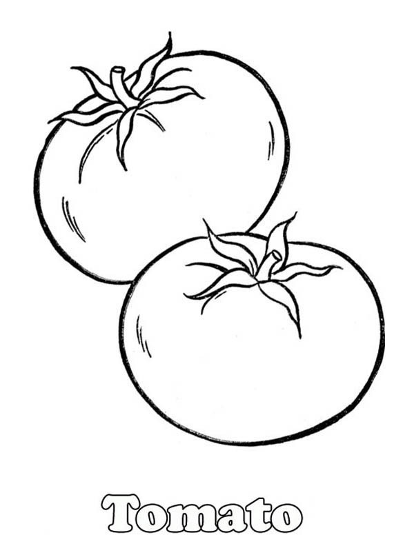 Best ideas about Red Coloring Pages For Kids . Save or Pin Cincinnati Reds Free Colouring Pages Now.