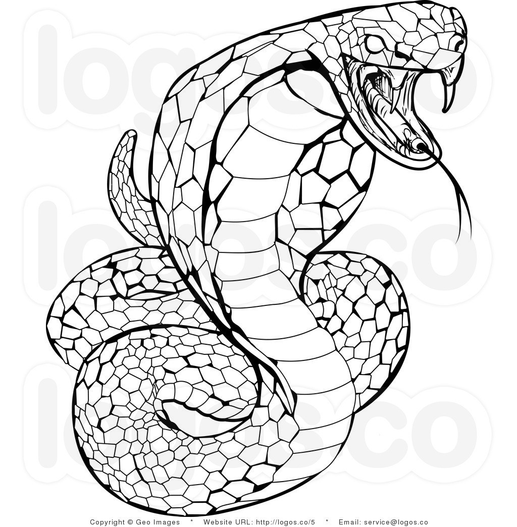 Best ideas about Snake Coloring Pages For Adults . Save or Pin Snakes To Color thekindproject Now.