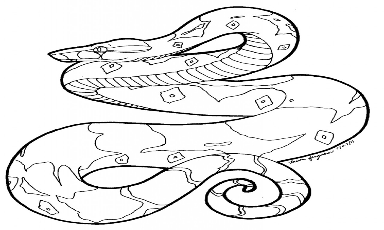Best ideas about Snake Coloring Pages For Adults . Save or Pin Snake Coloring Pages Hard Snakes grig3 Now.