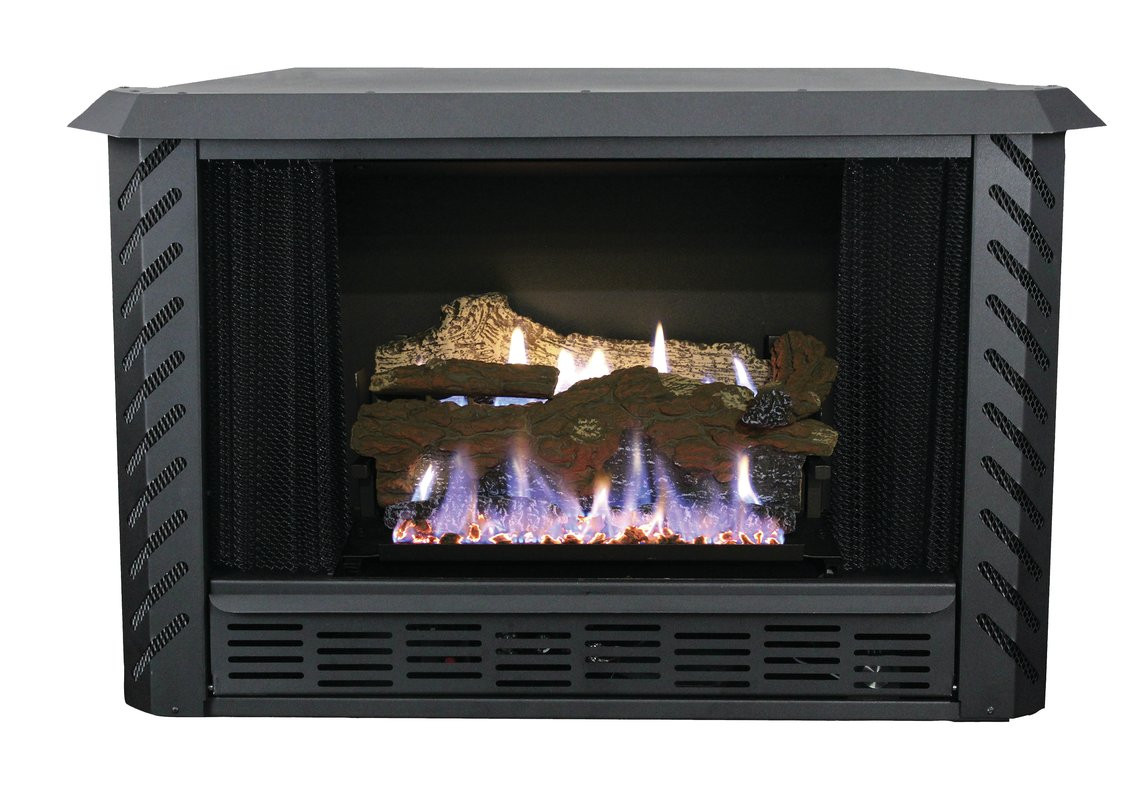 Best ideas about Vent Free Gas Fireplace Insert . Save or Pin Ashley Hearth Vent Free Natural Gas Fireplace Insert Now.