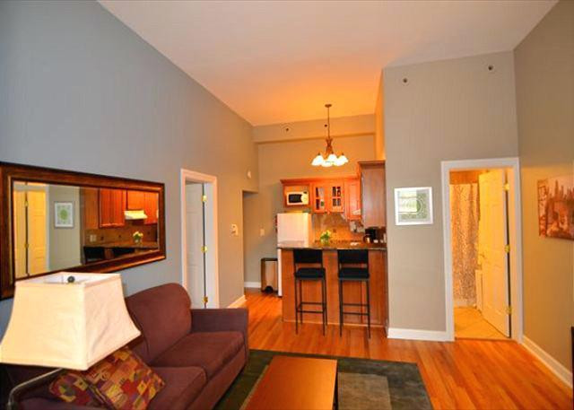 Best ideas about 1 Bedroom Apt In Chicago . Save or Pin e Bedroom Apartments Chicago Craigslist Now.