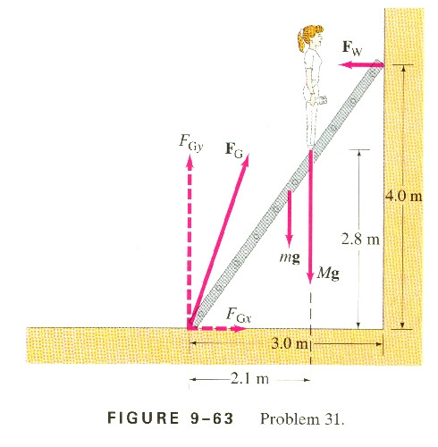 Best ideas about A Uniform Stationary Ladder Of Length L And Mass M Leans Against A Smooth Vertical Wall . Save or Pin uniform ladder 25 ft long rests against a smooth vertical Now.