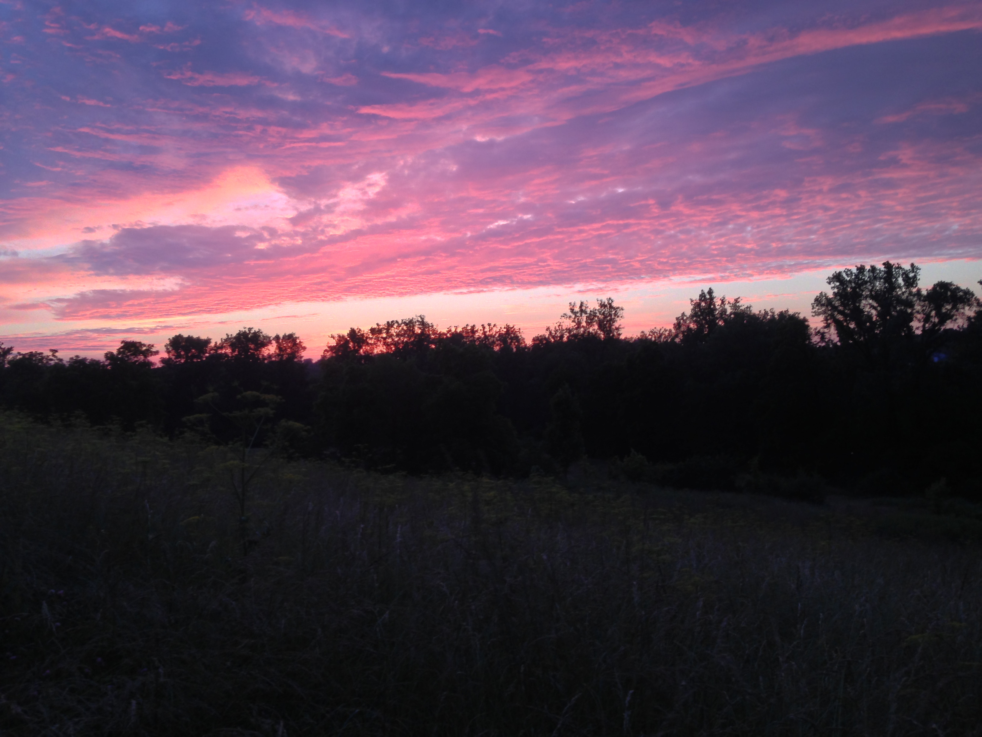 Best ideas about Another Word For Landscape . Save or Pin Another Beautiful Sunset on the Farm Now.