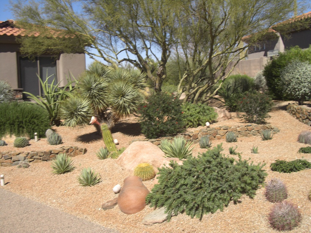 Best ideas about Arizona Landscape Ideas . Save or Pin Be e of landscaping quotes az Now.