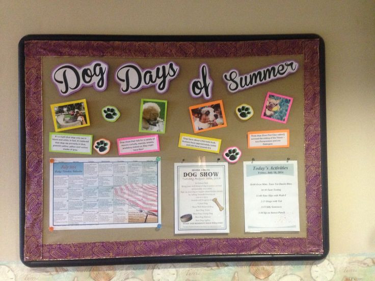 Best ideas about August Themes For Adults . Save or Pin Nursing Home Bulletin Board idea ALF SNF Memory Care Now.