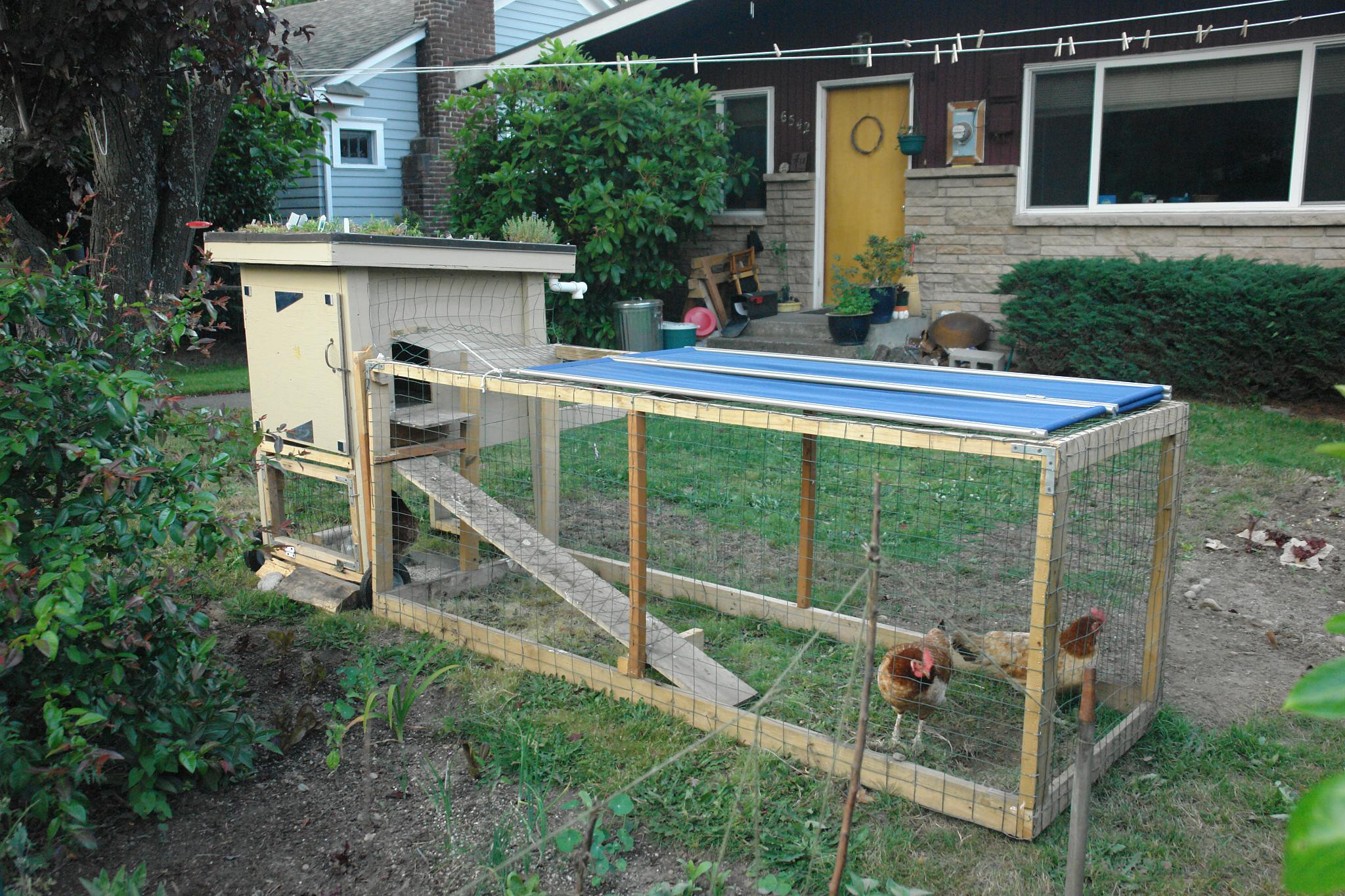 Best ideas about Backyard Chicken Coop . Save or Pin 301 Moved Permanently Now.