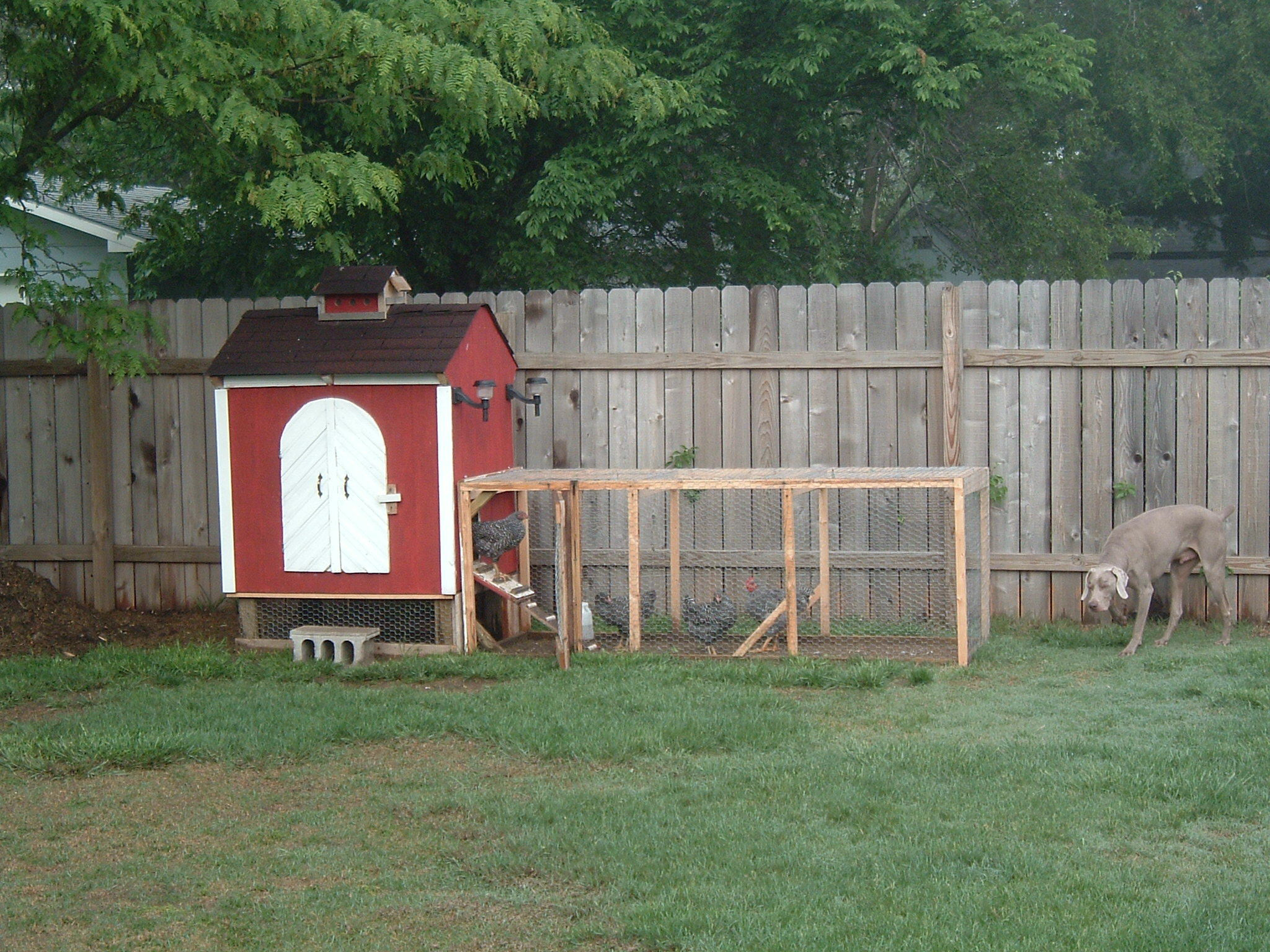 Best ideas about Backyard Chicken Coop . Save or Pin Backyard Chicken Coop 6 Steps with Now.