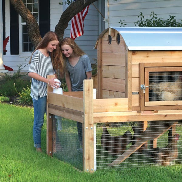 Best ideas about Backyard Chicken Coop . Save or Pin Round Top Backyard™ Chicken Coop Urban Coop pany Now.