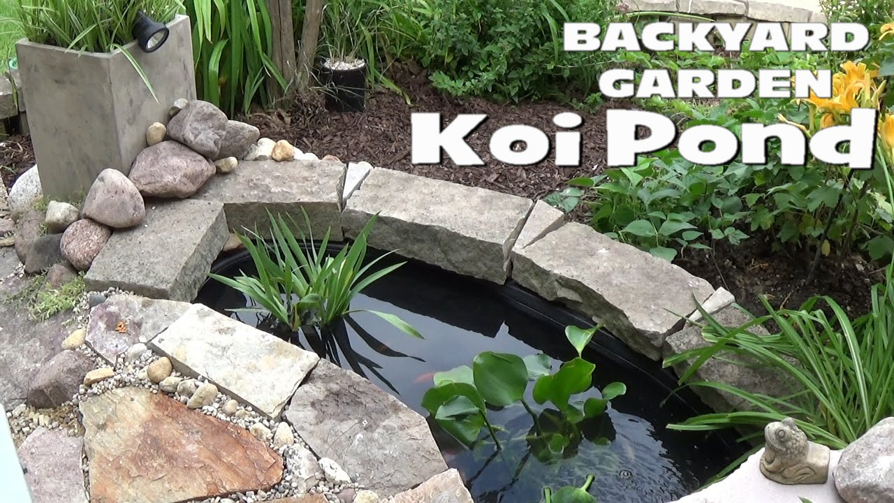 Best ideas about Backyard Koi Pond . Save or Pin Small Backyard Garden Koi & Goldfish Pond Setup Now.