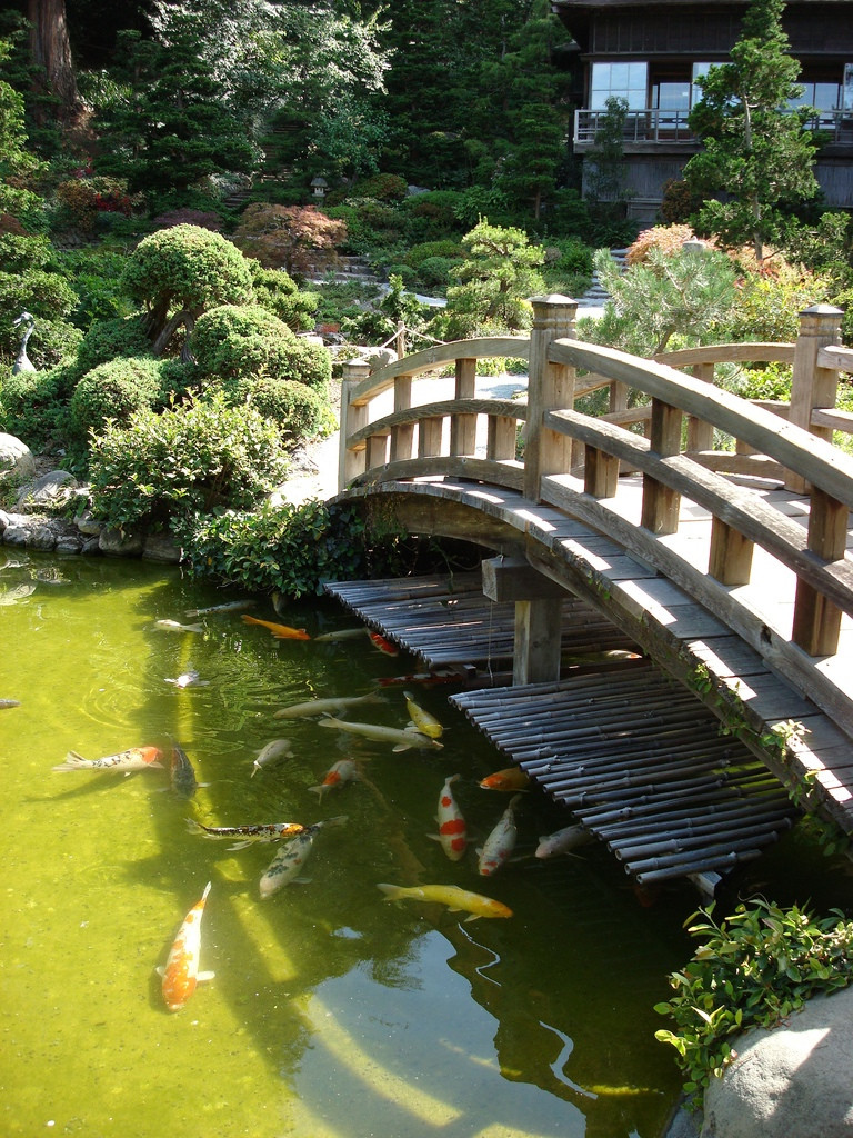 Best ideas about Backyard Koi Pond . Save or Pin Japanese Zen Gardens Now.