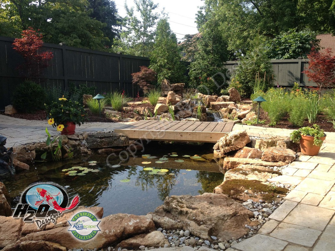 Best ideas about Backyard Koi Pond . Save or Pin Backyard Pond Ideas for your Landscape Lexington Now.