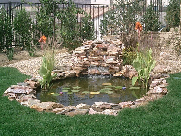 Best ideas about Backyard Koi Pond . Save or Pin Koi Ponds Residential Pond Construction Koi Pond builders Now.