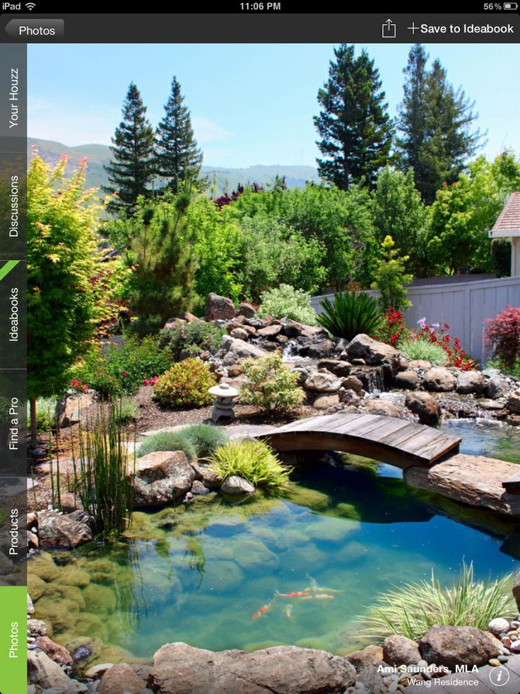 Best ideas about Backyard Koi Pond . Save or Pin What you need to know about garden koi ponds Now.