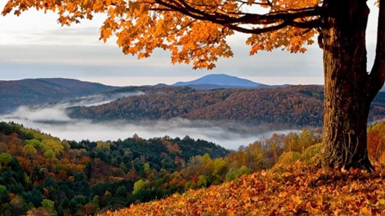 Best ideas about Beautiful Landscape Pictures . Save or Pin Beautiful Autumn Landscapes Now.