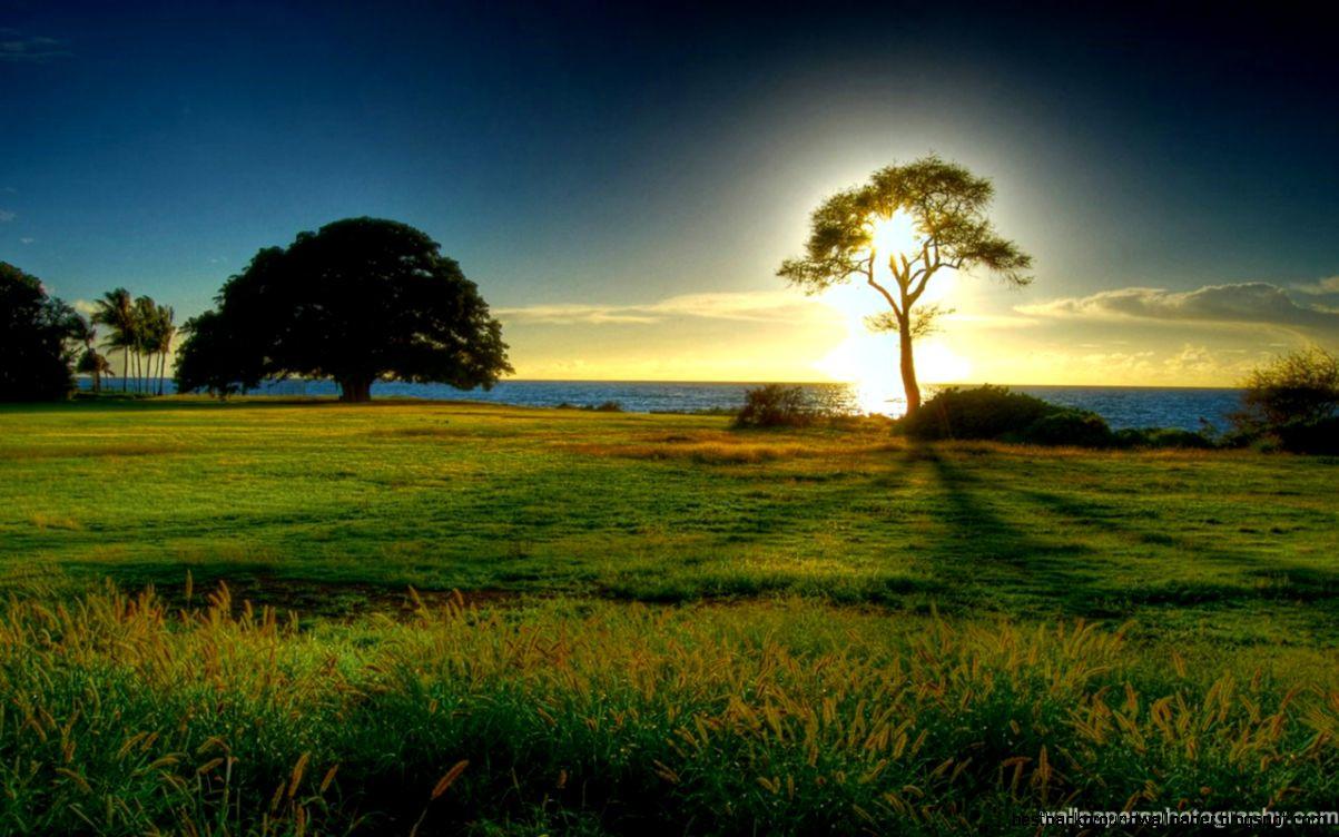 Best ideas about Beautiful Landscape Pictures . Save or Pin Most Beautiful Landscape Now.