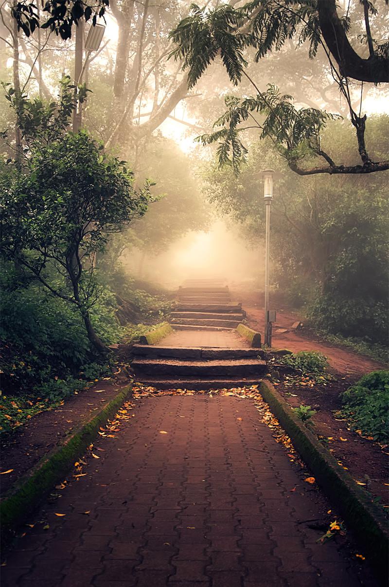 Best ideas about Beautiful Landscape Pictures . Save or Pin Beautiful Landscape Contest Best Entries Now.