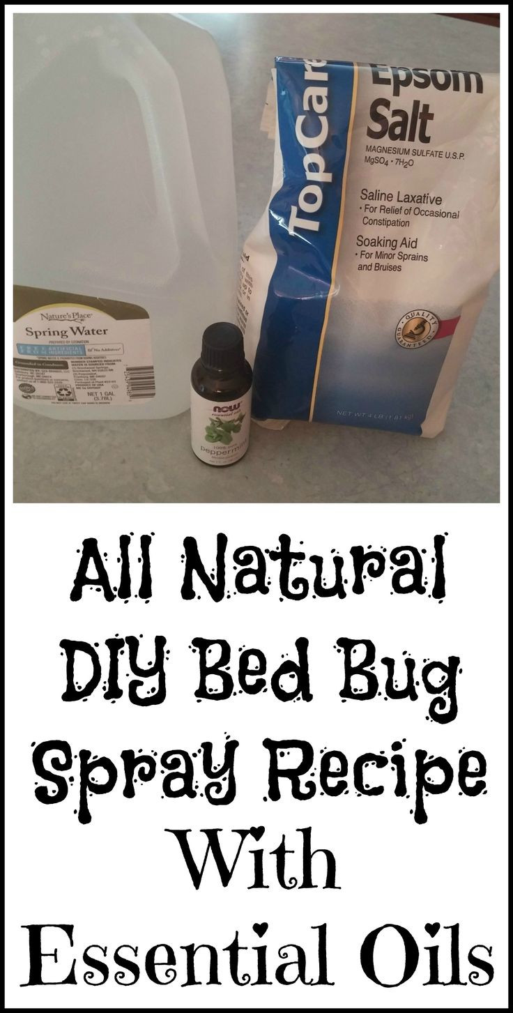 Best ideas about Bed Bug Repellent DIY . Save or Pin Best 25 Bed bugs ideas on Pinterest Now.