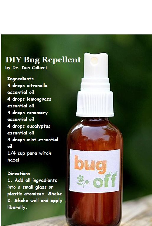 Best ideas about Bed Bug Repellent DIY . Save or Pin Pinterest • The world's catalog of ideas Now.