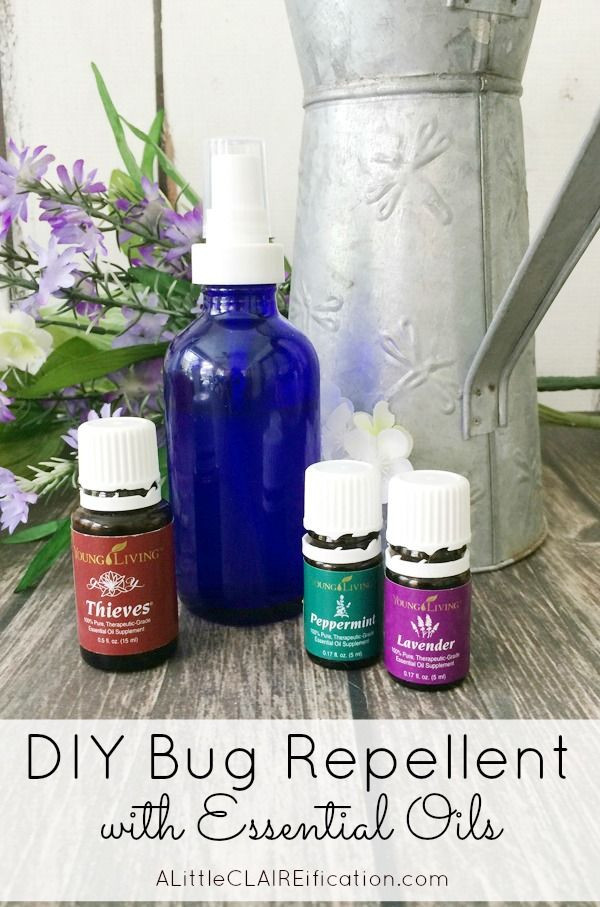 Best ideas about Bed Bug Repellent DIY . Save or Pin How To Make Your Own Bug Spray this DIY Insect Repellent Now.