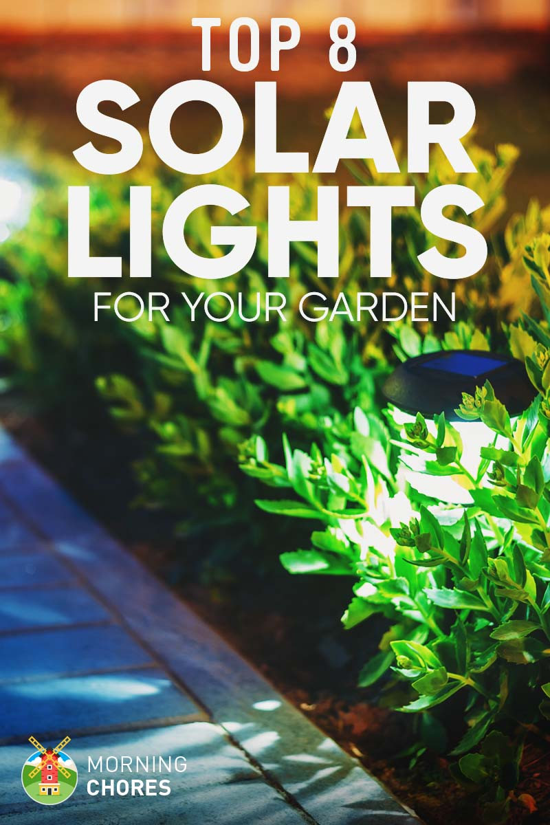 Best ideas about Best Outdoor Solar Lights . Save or Pin 8 Best & Brightest Solar Lights for Garden & Outdoor 2017 Now.