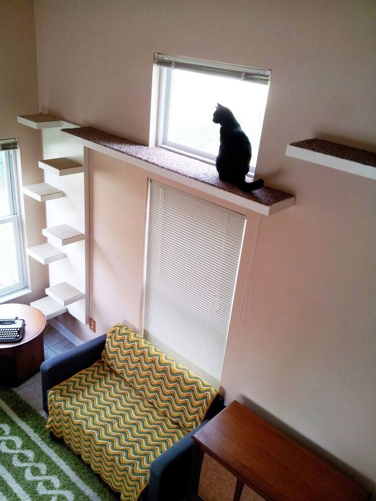Best ideas about Cat Wall Shelves DIY . Save or Pin Best 25 Cat walkway ideas on Pinterest Now.