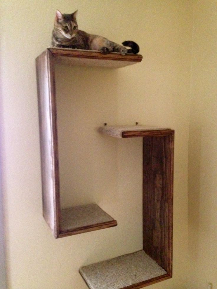 Best ideas about Cat Wall Shelves DIY . Save or Pin Best 25 Cat wall shelves ideas on Pinterest Now.