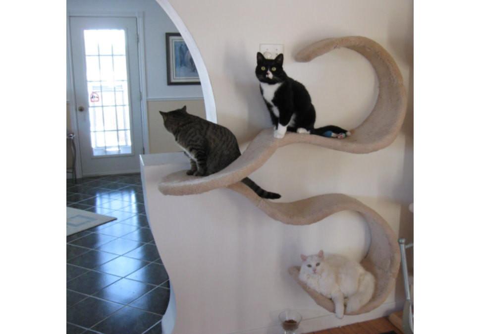 Best ideas about Cat Wall Shelves DIY . Save or Pin Wall mounted cat shelf BigDIYIdeas Now.